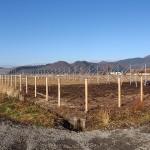赤川作業風景12