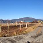 赤川作業風景13
